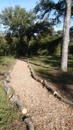 Walking path winding near Williamson Creek